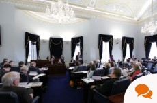 Column: The abolition of the Seanad is an act of political vandalism