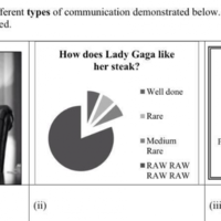 Lady Gaga and horse burgers: Junior and Leaving Cert examiners having the craic