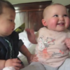 WATCH: These two babies are having a great time together