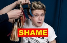 The Dredge: Niall Horan has brought shame on Ireland