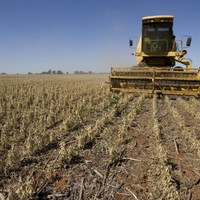 UN says global food prices hit a record high in February