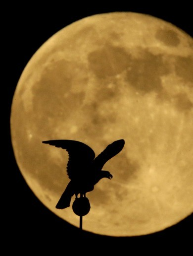 23 spectacular images of the weekend's Supermoon