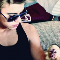 The Dredge: You can touch Justin Bieber's monkey... a REAL monkey, you filthy scuts