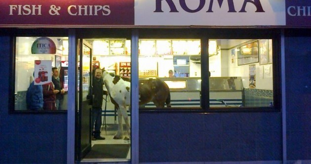 Only in an Irish chipper...