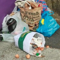 "Video shows scale of ""unbearable"" illegal rubbish dumping in Dublin"