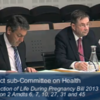 TDs vote against extending abortion bill to include fatal foetal abnormalities