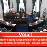 The Seanad will spend most of this week debating the abortion legislation