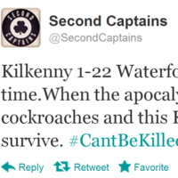 13 tweets that sum up the excitement of Kilkenny's epic win over Waterford