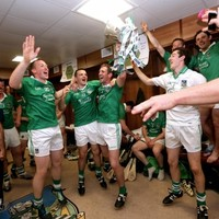 11 pictures that show how happy the Limerick hurlers are tonight