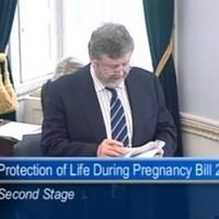 Two senators hope to bring amendments on fatal foetal abnormalities