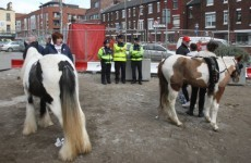 Man due in court over Smithfield horse fair attack
