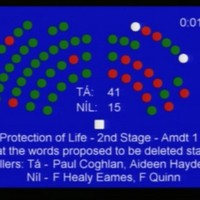 Here's how the Seanad voted on the abortion legislation
