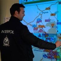 Interpol seize fake goods worth more than €100 million