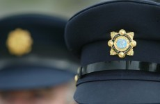 """The punishment must fit the crime"" - Garda anger at remission for killer"