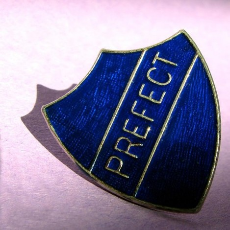 Prefect badge/pin