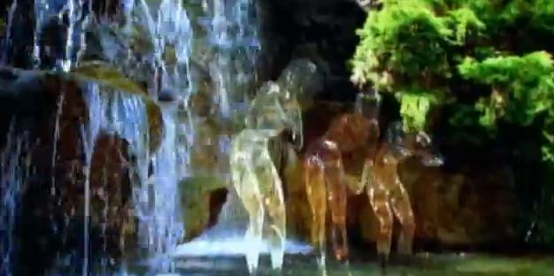waterpeople