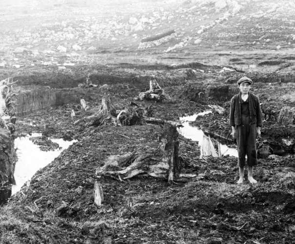 Pictorial record shows the Irish hard at work 100 years ago