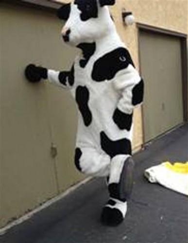 Cow Costume Stolen