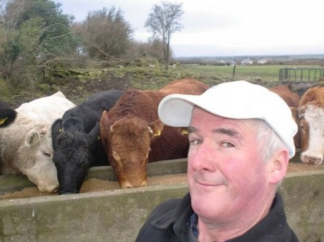 Tom Lally from Galway...WHAT DOES THE COW SAY? ...