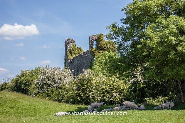 Trim Castle - Heritage Ireland