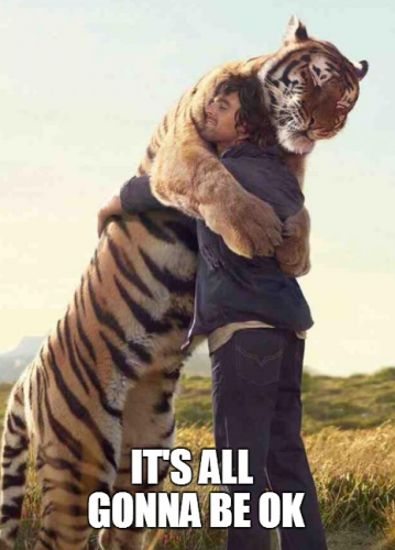 tigerhugginghuman