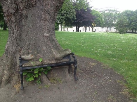 Dublins greatest public bench at the kings inns