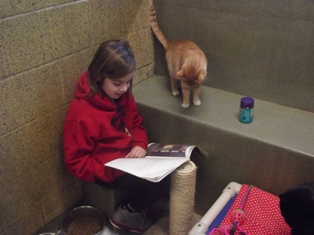 Book Buddies - Animal Rescue League of Berks County | Facebook