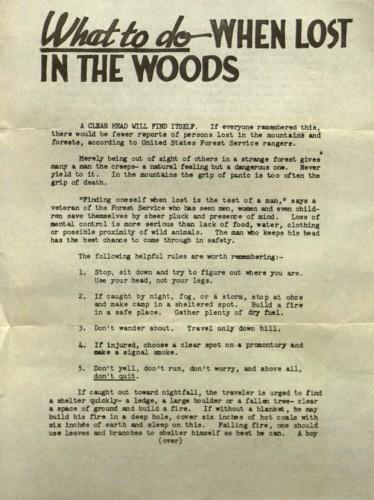 lostinwoods