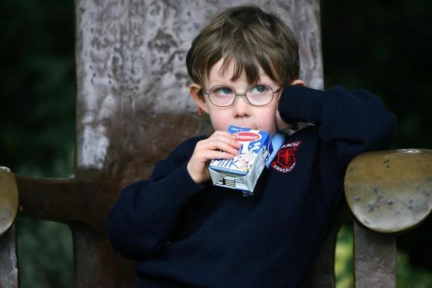 Ireland launches school milk scheme