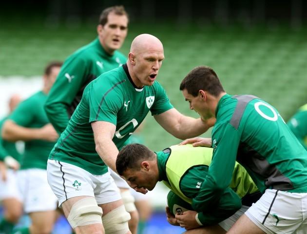 Rugby Union - Guinness Series 2013 - Ireland v Australia - Ireland Captain's Run - Aviva Stadium