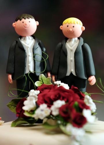 Same-sex marriage bid faces defeat