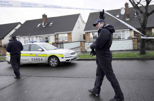Hartstown shooting. Gardai and members