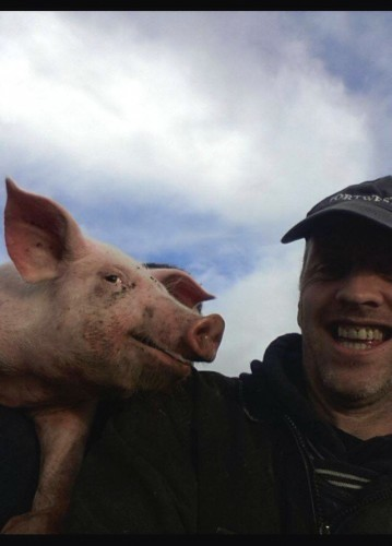 photogenicpig