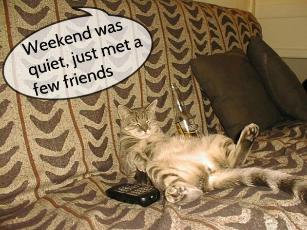 weekendcat