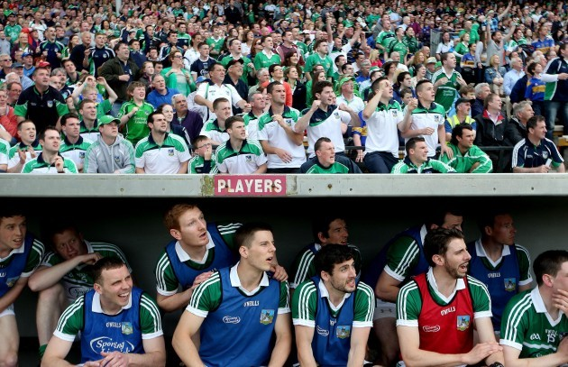 Limerick players and fans look on late in the game