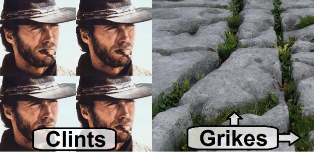 clints