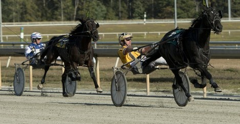 Harness Racing at Colonial Downs