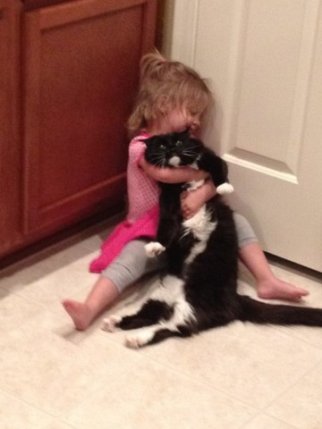 Just my girlfriend's daughter showing the cat some love. - Imgur