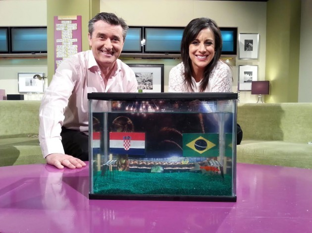 Late Lunch on TV3 Martin King & Lucy Kennedy with Lionel - Fish