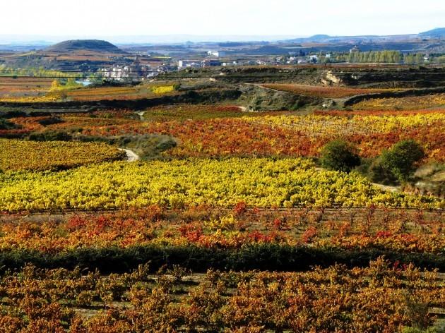 Color Rioja
