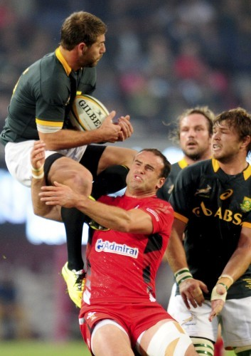 South Africa Rugby Wales