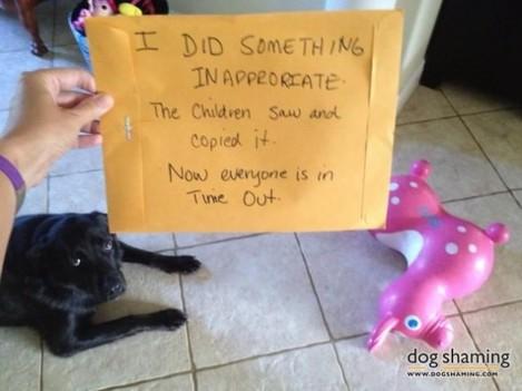 naughty-dogs26