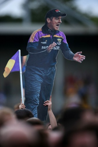 Wexford supporters celebrate on the pitch