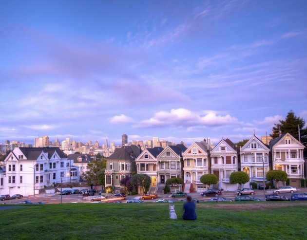 A man, his dog and seven painted ladies in San Francisco