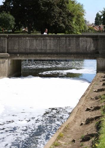 Tolka River pollution