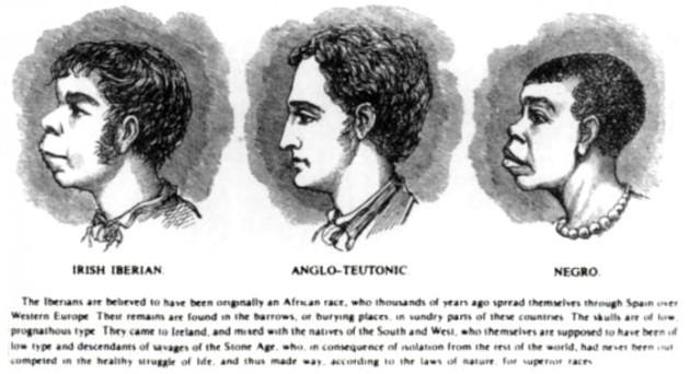 Scientific_racism_irish - image for article