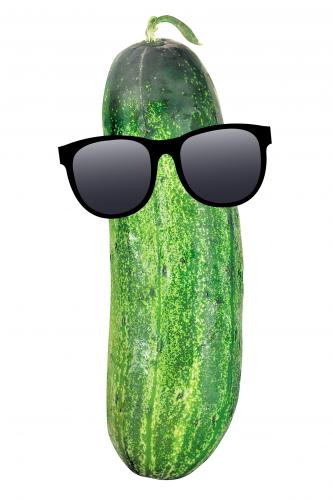Cool Cucumber - Imgur