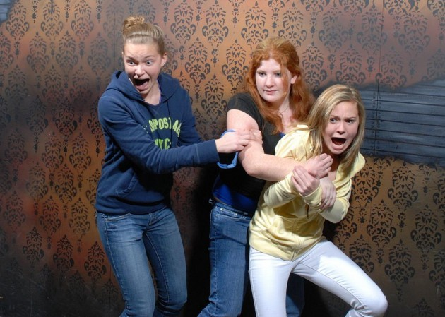 Gingers show no fear - Imgur