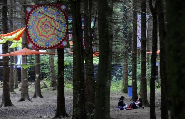 Electric Picnic Music Festivals