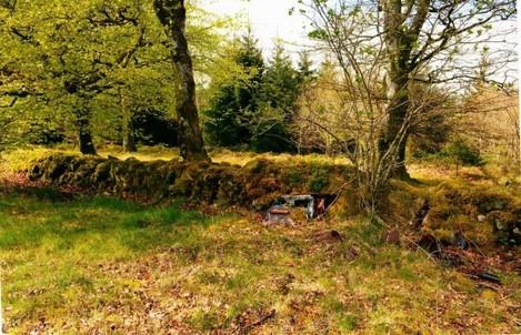 http://cdn.thejournal.ie/media/2014/09/formil-wood-firing-range1-2-630x405.jpg